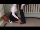 Школьница сосет в школе под лестницей ! Малолетка отсасывает член, порно 18+ трах орал оральный секс