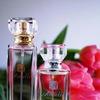 ღΆℛℳℰℒℒℰღ-парфюмерия|бизнес|Орел,РФ,СНГ|Армель57