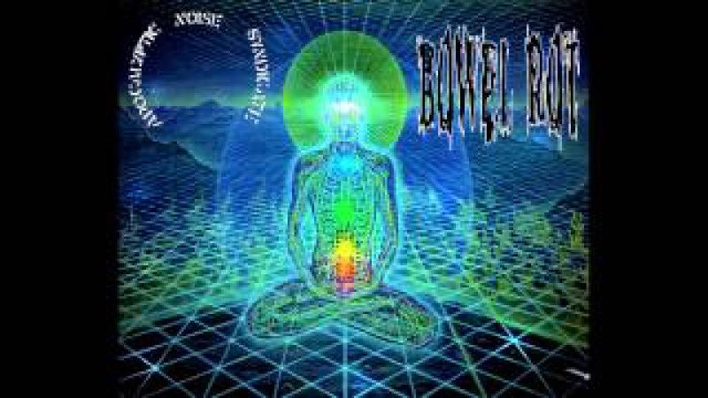 Bowel Rot - split with Apocalyptic Noise Syndicate FULL ALBUM (2014 - Gorenoise / Goregrind)