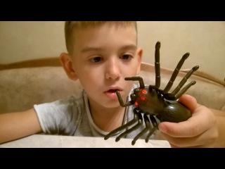 ИГРУШКИ НА РАДИОУПРАВЛЕНИИ! ПАУК ЧЕРНАЯ ВДОВА превращение в паука Black Widow Spider ON the RADIO