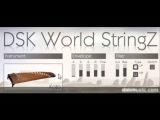 DSK World StringZ - Free VST