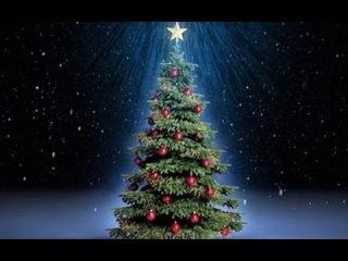 VLOG от-3 лица Новогодняя Ёлка;Подарок от Деда Морозагость Evgexa !