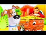Видео для детей. ВЕСЕЛАЯ ШКОЛА. Маша КАПУКИ КАНУКИ и игрушки мультика тайная жизнь домашних животных
