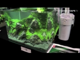 The Art of the Planted Aquarium 2015 - Scapers Tank (Nano) category, part 6