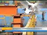 Рыбинск - 40 МУП Водоканал - в распоряжение Ярославской области