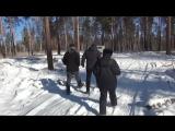 В Иркутске полицейские задержали работника лесхоза по подозрению в организации незаконной рубки