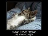 Новые демотиваторы ))