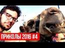 ЛУЧШИЕ ФЕЙЛЫ И НЕУДАЧИ 2016 Подборка приколов 04 про рыбалку, животныз и девушек HD