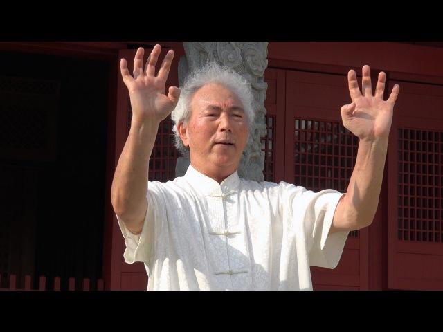 全身を武器化する沖縄空手がカッコ良すぎる Weapons of Okinawan Karate