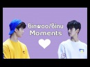 아스트로[ASTRO] Binwoo/Binu Moments