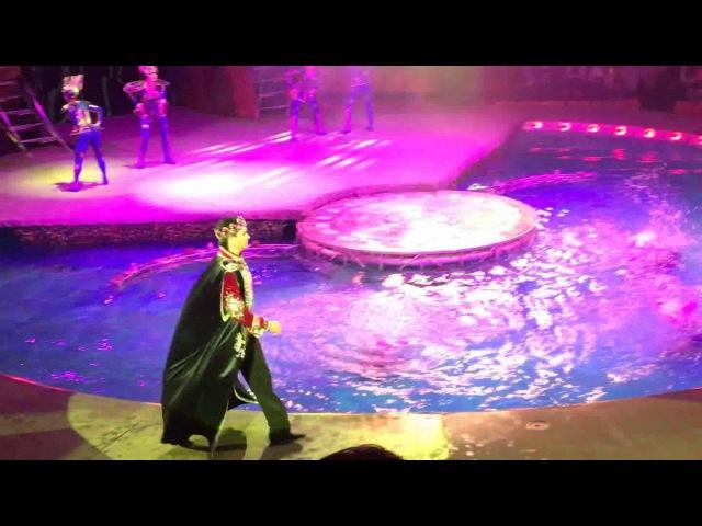 Тверской Цирк на воде