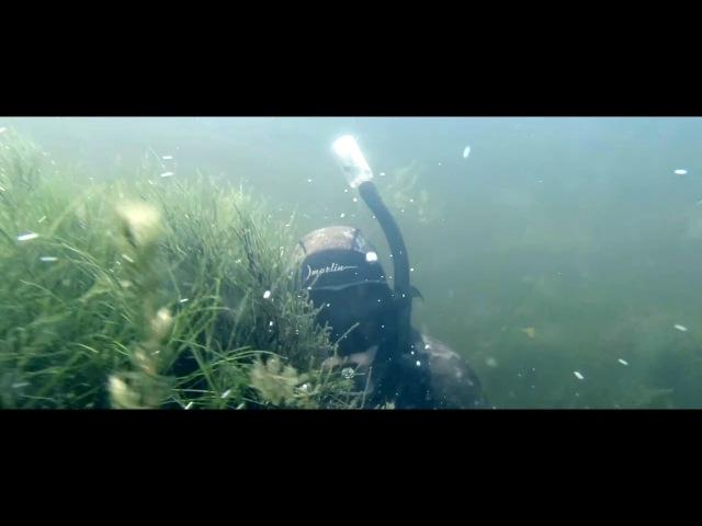 Подводная охота! РАЗРЕШИТЬ С ФОНАРЕМ И ЗИМОЙ! Азово - Черноморский бассейн!