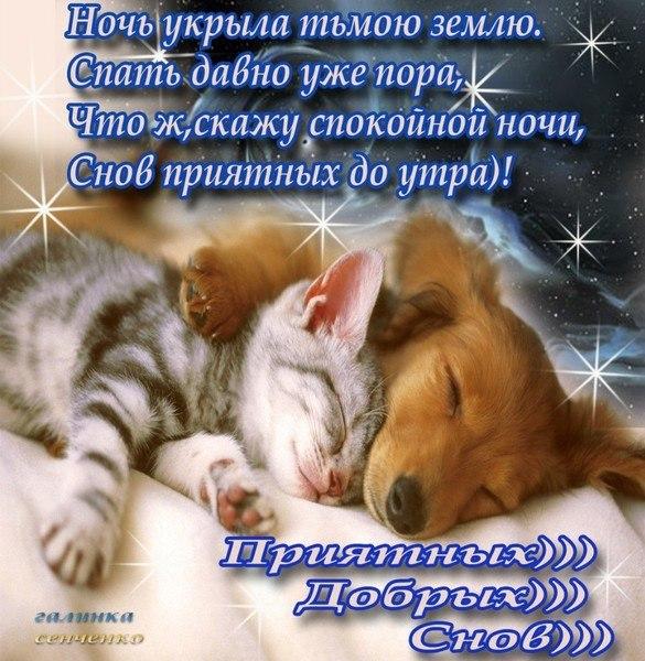 Картинки спокойной ночи приятных сновидений