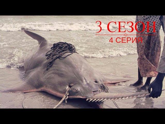 Речные Монстры: 3 сезон 4 серия Рыба-пила