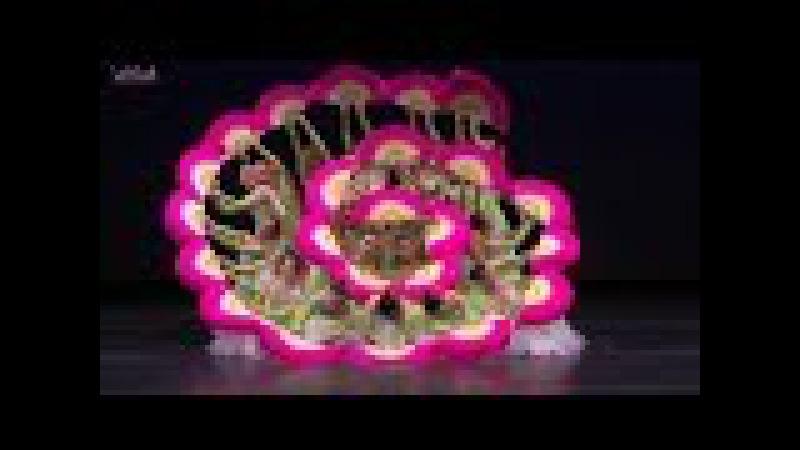 【美国亚特兰大魏东升(亚专)舞校】2014 NYC YAGP Ensemble Top-12 Jasmine Flower by APDA
