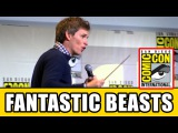 Eddie Redmayne Casts LUMOS MAXIMA Spell in Comic Con Hall H Fantastic Beasts and Where to Find Them