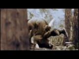 Sabaton-Camouflage (Lyrics) (Bonus) (Music Video)
