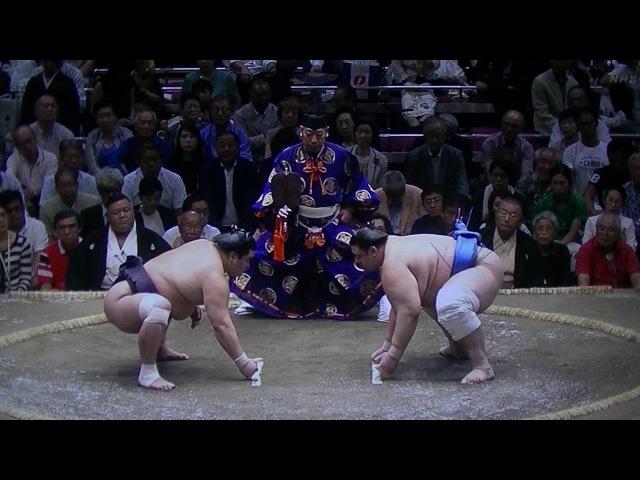2016 相撲(SUMO) 9月場所(Sept.Stage) 三日目(3 day) 妙義龍(Myougiryuu) VS 碧山(Aoiyama)