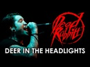 The Dead Rabbitts - Deer In The Headlights LIVE! The Get Real Tour