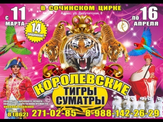 Цирк в Сочи с 25 марта