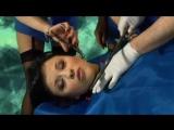 Пающие Трусы - Пластический Хирург (HD)