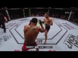 Mike Perry vs Danny Roberts UFC 204