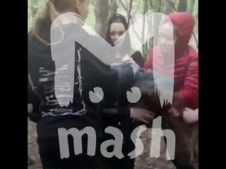 Девочки, избившие толпой школьницу в парке, просят не наказывать их