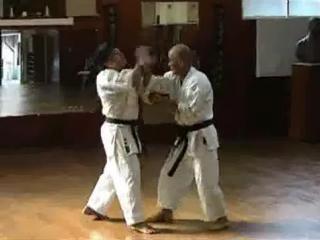 БИЕО Masaji TAIRA sensei Shisochin renzoku bunkai
