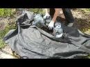 Как посадить тыкву и кабачки на землю без перекопки.