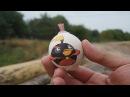 Как сделать бомбу из куриного яйца ?