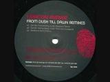 Lexicon Avenue From Dusk Till Dawn (Sander Kleinenberg Audio Paranoid Remix)