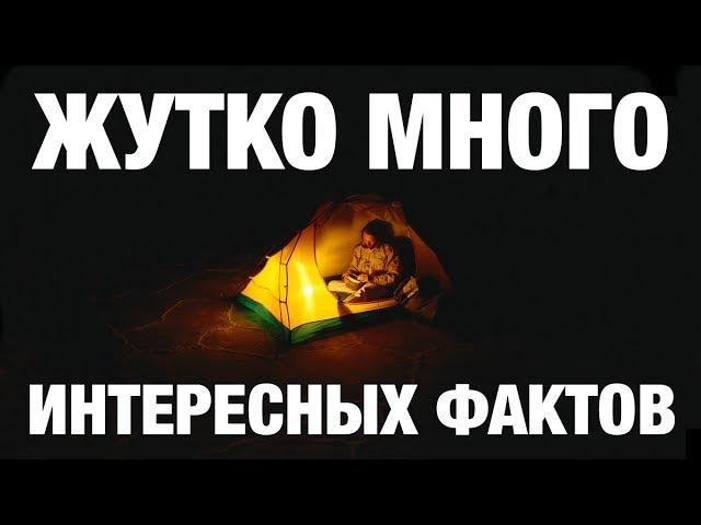 Скрытая история, культура, традиции наших предков. Знания славян. Школа развития человека. Сундаков