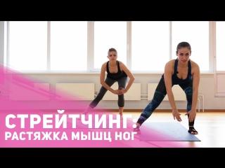 Растягиваем мышцы ног - упражнения на растяжку - РАСТЯЖКА МЫШЦ БЕДРА CFW