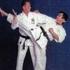 НСБИ - Нижегородский союз боевых искусств