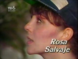 ВЕРОНИКА КАСТРО-ДИКАЯ РОЗА (Rosa Salvaje)