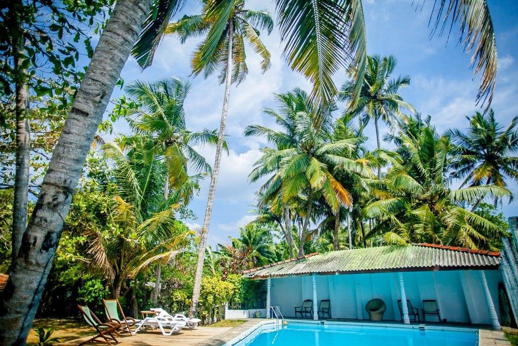 Саша и Саша – пара, которая приехала жить на Шри-Ланку, нашла и восстановила заброшенную виллу, вложив в неё все силы и превратив в уютный гостевой дом.