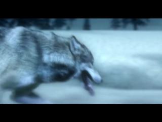 Комиссар - Волчья кровь(VidioMix)(720p)