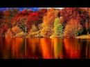 Осенний блюз. – Золотой саксофон / Autumn Blues. – Golden Saxophone • ВидеоКанал «exZotikA Max»