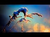 Aleksey Beloozerov Electric Snowstorm (Original Mix)