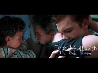 Gallavich Evak - I'm Only Human