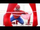Голый человек паук и Эльза против джокер и Женщина кошка смешные шалости Суперг ...