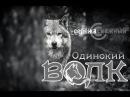 ❄ Серёжа Снежный — Одинокий волк ✡