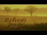 Эхо джунглей 4 серия. Танцующий журавль  Echoes from the Jungle (2006) - Видео Dailymotion