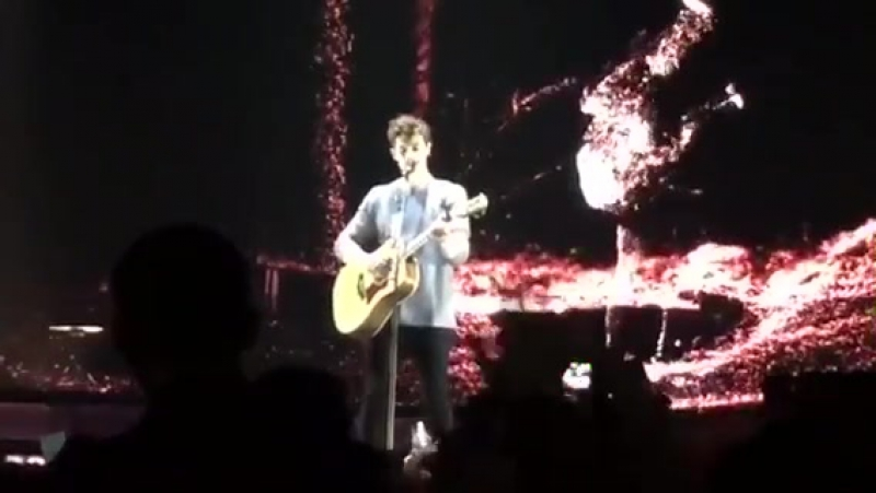 Shawn Mendes -
