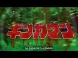 GoGo Sentai Boukenger - Big Gathering Of The 30 Sentai & Special File