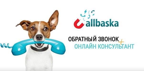 Callbaska - обратный звонок + бесплатный онлайн консультант.От 1 до