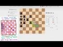 Шахматная задача Пенроуза Решение 2 Пат в 100 ходов