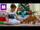 Макс наряжает ёлку на Новый Год 2017 Ждём тонну конфет в носках и Мурка грызёт бело