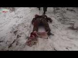 18+ тело убитого диверсанта ВСУ вытащили с минного поля