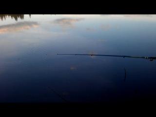 Чудная рыбалка (часть 1)